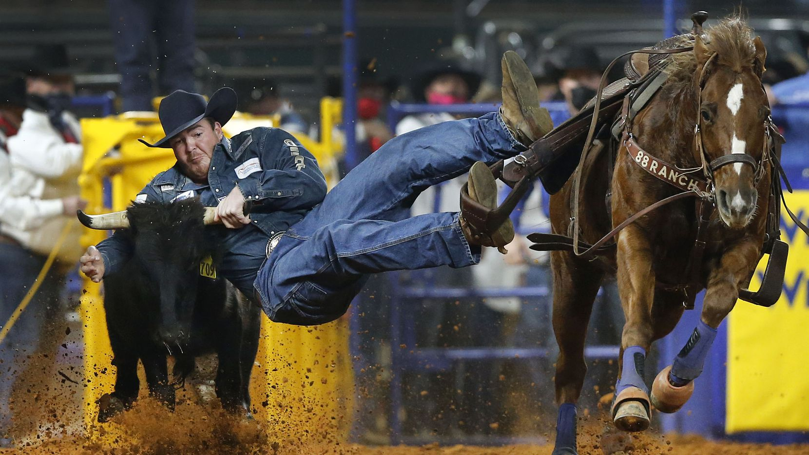 Steer wrestler Jacob Elder slides off his horse and turns a first place time during Round 10 of the National Finals Rodeo at Globe Life Field in Arlington, Saturday, December 12, 2020. Elder won the round and the all-around.