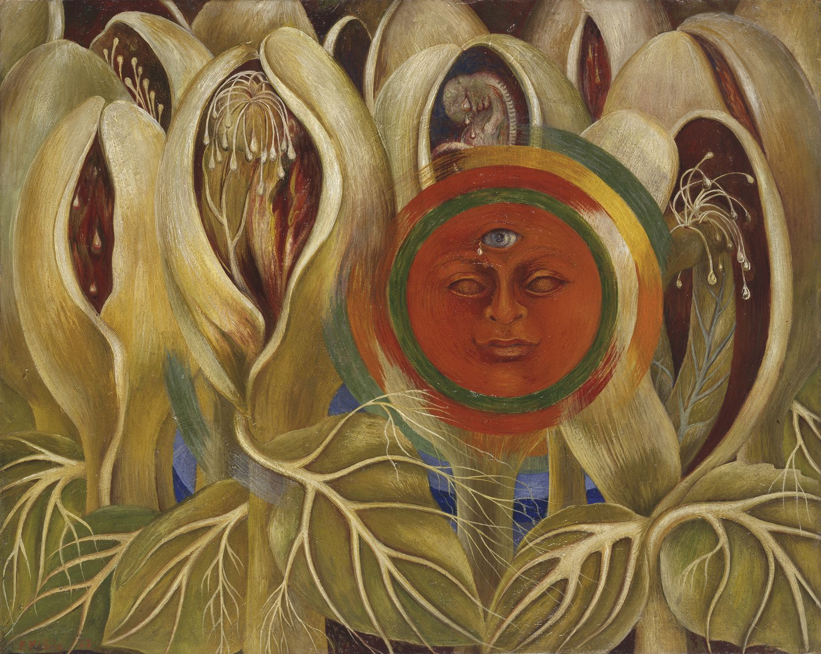 Frida Kahlo, Sun and Life, 1947, óleo sobre masonita, colección privada, cortesía de Galer a Arvil.  2021 Banco de México Diego Rivera Frida Kahlo Museums Trust, México, DF / Artists Rights Society (ARS), Nueva York
