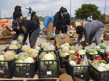 Volunteers with the Harvest Food Project Rescue, the Ledbetter Neighborhood Association and the Census help prepare food to be distributed on April 18, 2020, at Jaycee Zaragoza Park in Dallas. (Juan Figueroa/ The Dallas Morning News)