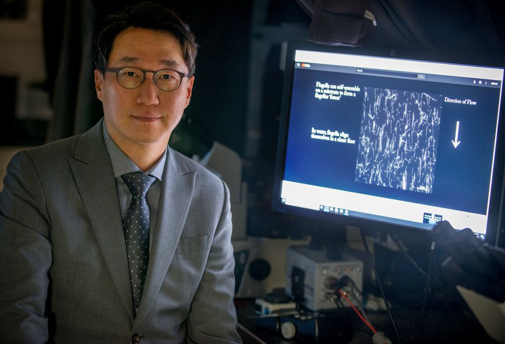 Dr. Minjun Kim, Professor, Robert C. Womack Chair in Engineering, in his lab at SMU in Dallas on May 18, 2018. (Robert W. Hart/Special Contributor)