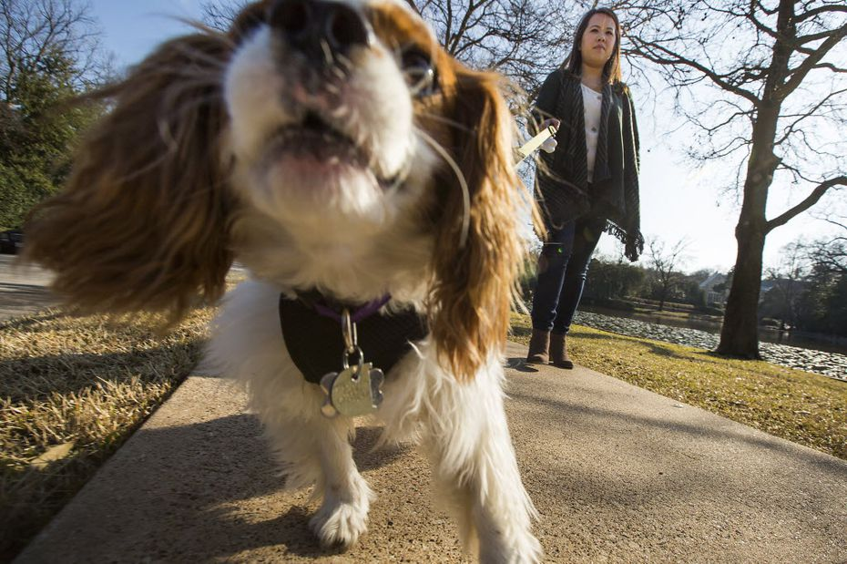 Pham's dog Bentley was quarantined after Pham became ill but never contracted Ebola.