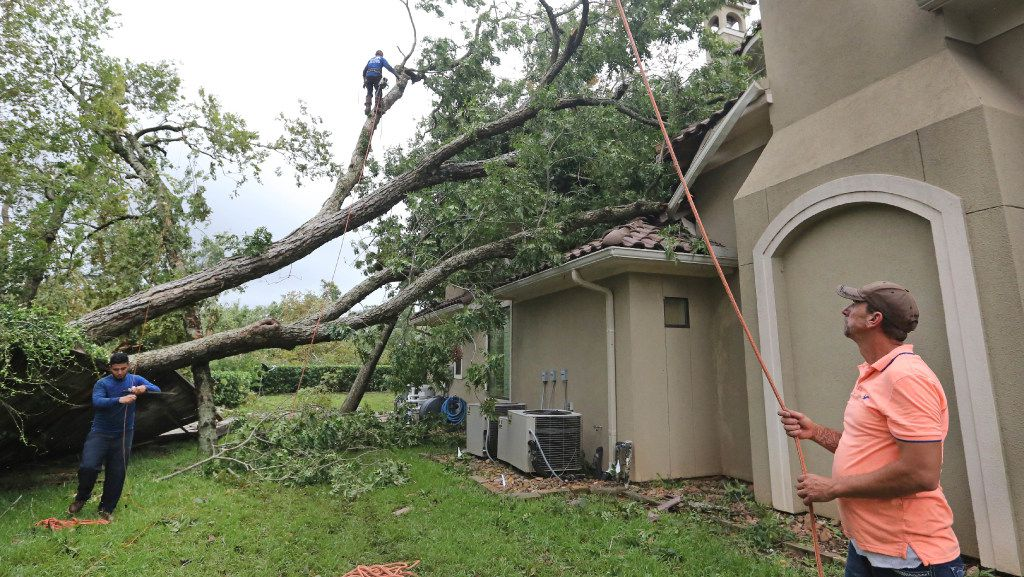 Crews work to take down trees that fell on the Odneal family's home in Sienna Plantation.