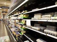 There were still a few cartons of eggs at the Kroger Marketplace in Forney on Wednesday.