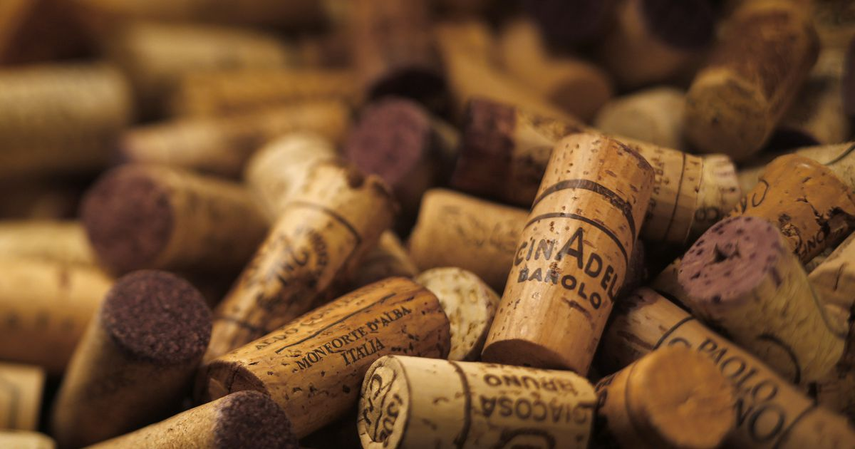 For collectors and value-conscious wine lovers alike, now is the moment to buy Barolo