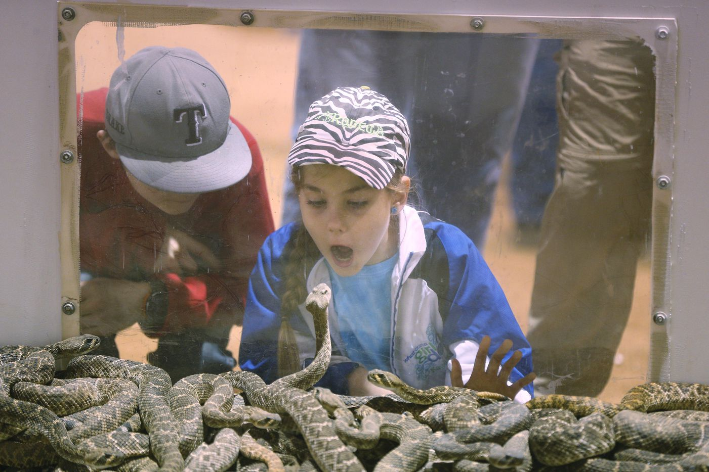 Bramhan Matschek, 12, and his sister Kaydence Matschek, 9, watch a snake watching them at Nolan County Coliseum.