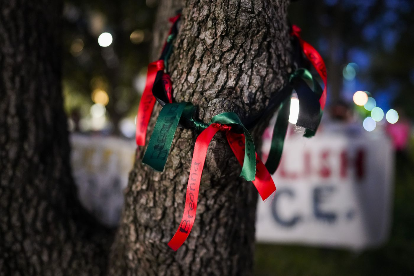 A ribbon bearing the name of Breonna Taylor hangs from a tree as demonstrators gather for a rally at Dallas City Hall after a Kentucky grand jury brought no charges against Louisville police for the killing of Taylor on Wednesday, Sept. 23, 2020.