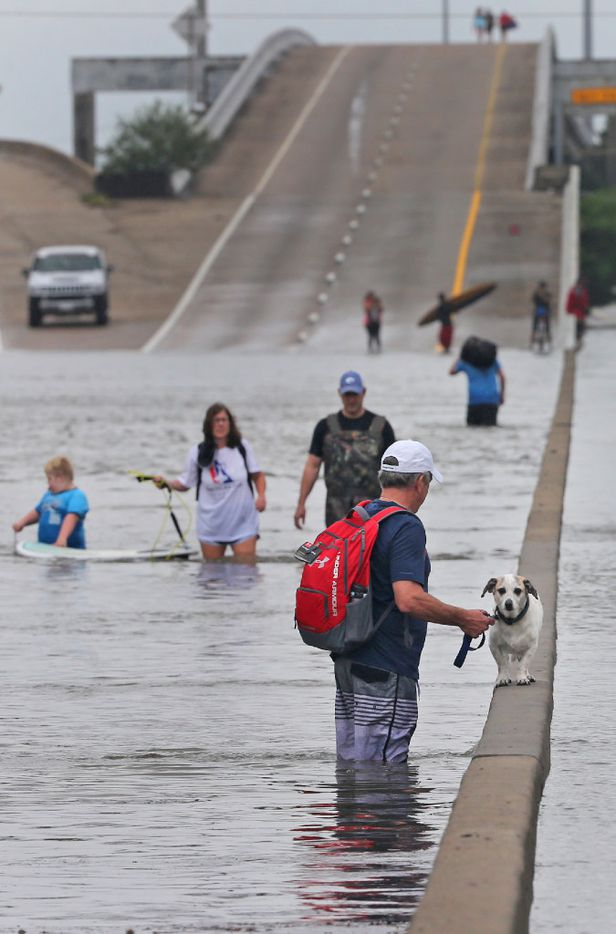 Greg Mayfield gives Jack the dog a chance to rest as he and friends help rescue a family from their flooded home and bring them to higher ground on Interstate 610 south. (Louis DeLuca/The Dallas Morning News)