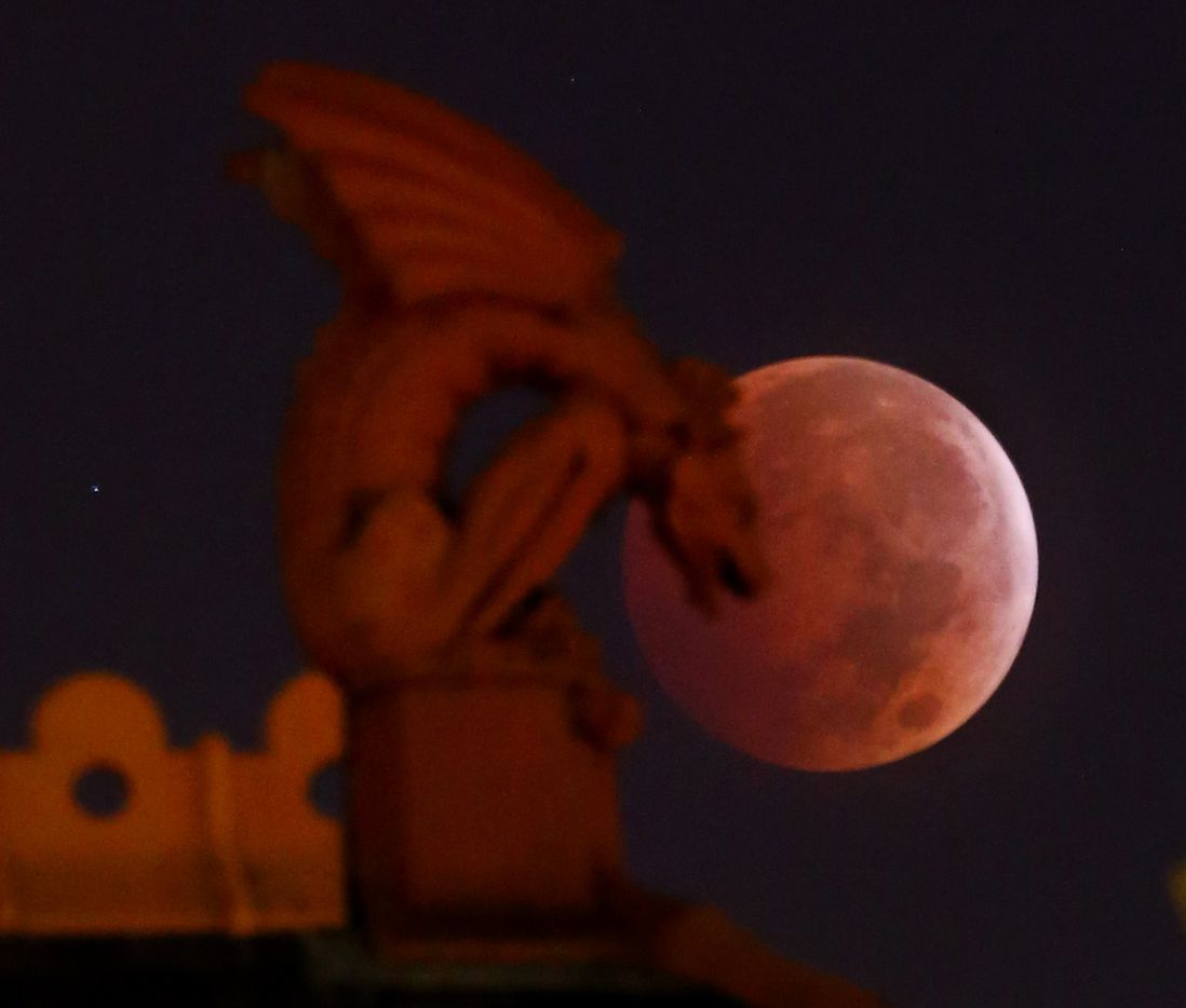 "The ""Blood Moon"" appears behind a gargoyle atop the old red Dallas County Courthouse during a lunar eclipse in Dallas, early morning, Oct. 8, 2014."
