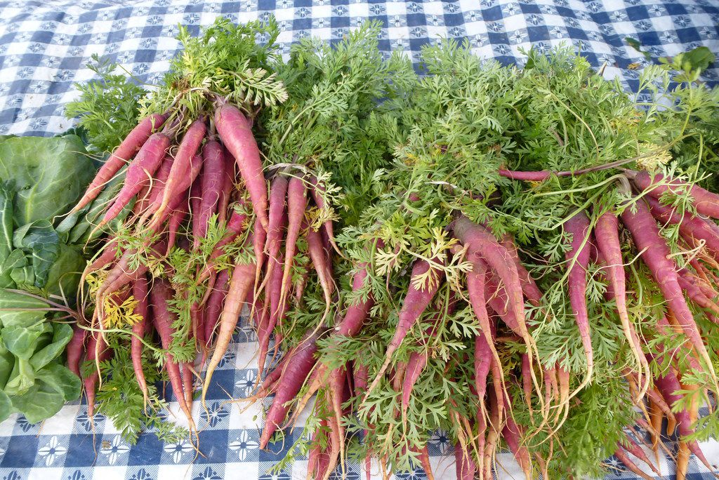 Demases Farm in Boyd had plenty of tender carrots, including this Aggie-created maroon variety, at White Rock Farmers Market.