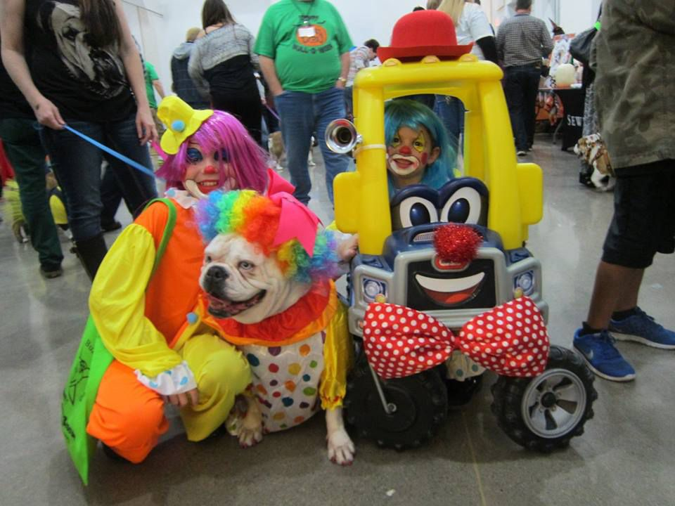 LONE STAR BULLDOG Club Rescue's annual Bull-O-Ween includes costume contests, vendors and a silent auction. (2015 File Photo/Tatia Woldt)