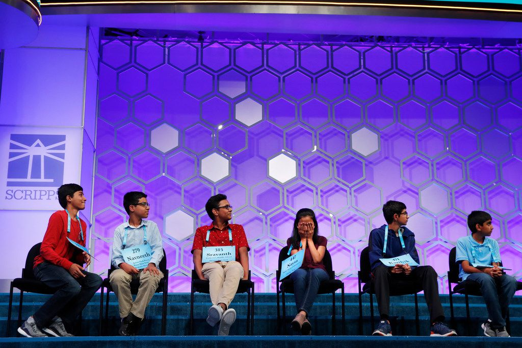 Naysa Modi, 12, from Frisco, Texas, fourth from left, covers her face as her video profile is aired during the evening finals of the Scripps National Spelling Bee in Oxon Hill, Md., Thursday, May 31, 2018. From left are the six remaining spellers, Jashun Paluru, 13, from West Lafayette, Ind., Navneeth Murali, 12, from Edison, N.J., Sravanth Malla, 14, from Haverstraw, N.Y., Naysa Modi, 12, from Frisco, Texas, Karthik Nemmani, 14, from McKinney, Texas, and Abhijay Kodali, 11, from Flower Mound, Texas. (AP Photo/Jacquelyn Martin)