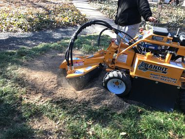 Stump grinders are the best way to eliminate stumps quickly.