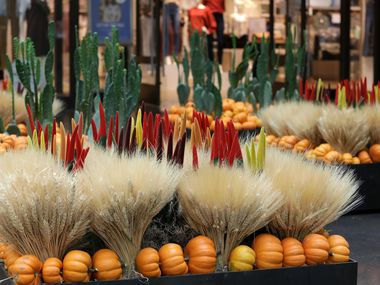 New seasonal landscaping displays are replacing summer flowers at NorthPark Center in Dallas.