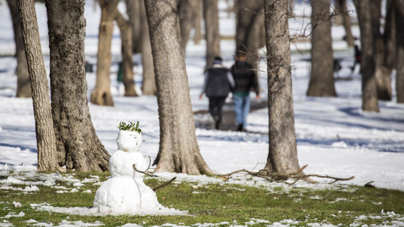 Grass starts to be exposed around a snowman in Tenison Park as warmer afternoon temperatures melt away a record snowfall on Thursday, March 5, 2015, in Dallas. Overnight snow and sleet blanketed the region overnight piling up to 2 to 5 inches across much of the area.