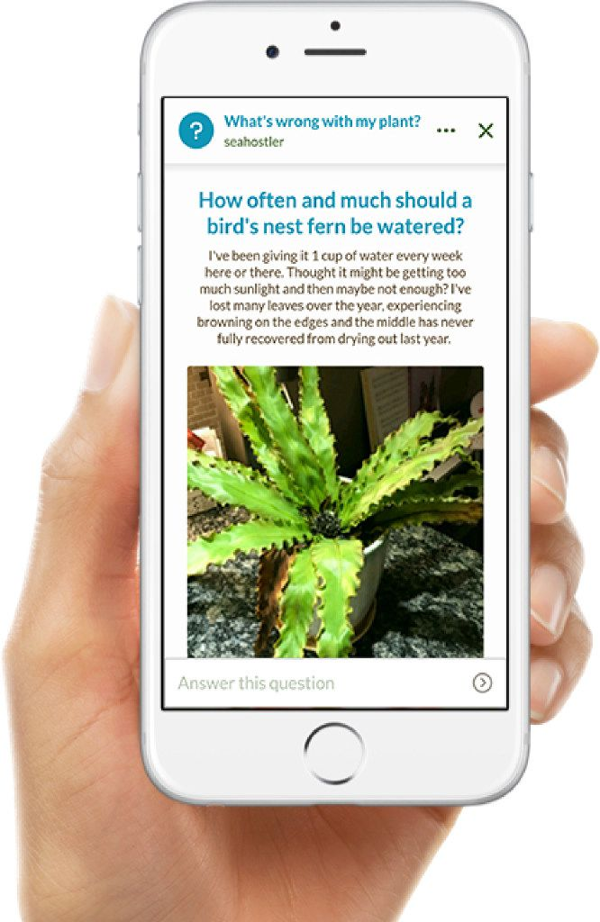 Get answers on the Grow It! app.
