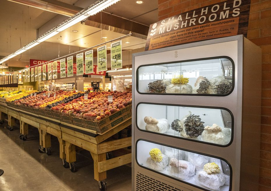 Mushrooms are being growing in the reopened Central Market. It's just one of the new features that customers will notice when the store opens Wednesday.