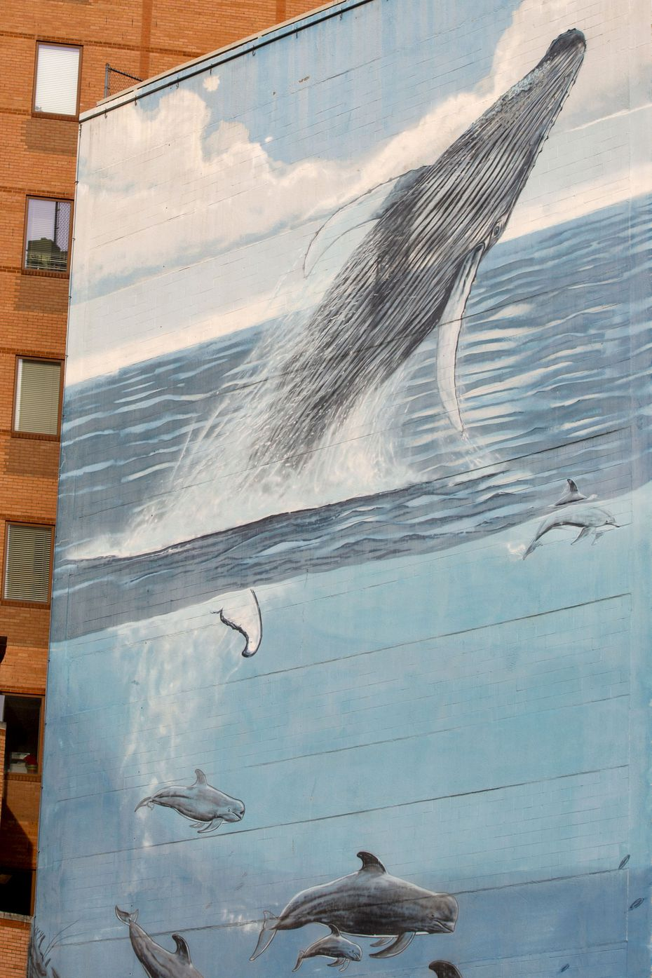 """After recent advertising posters came down, a mural painted in 1999 by the artist and conservationist Wyland is visible on Tuesday, April 21, 2020 in downtown Dallas. The mural is part of a series of 101 he did around the world called """"Whaling Walls."""""""