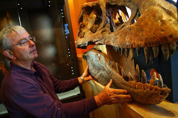 Rick Rolater with a Tyrannosaurus Bataar skull displayed in his Colorado gallery in 2007.