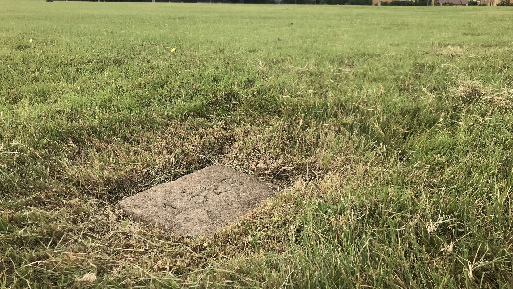 A numbered slab marking the final resting place of a patient who died at the Austin State Hospital, known as the State Lunatic Asylum until 1925, was photographed on May 23 in Austin.