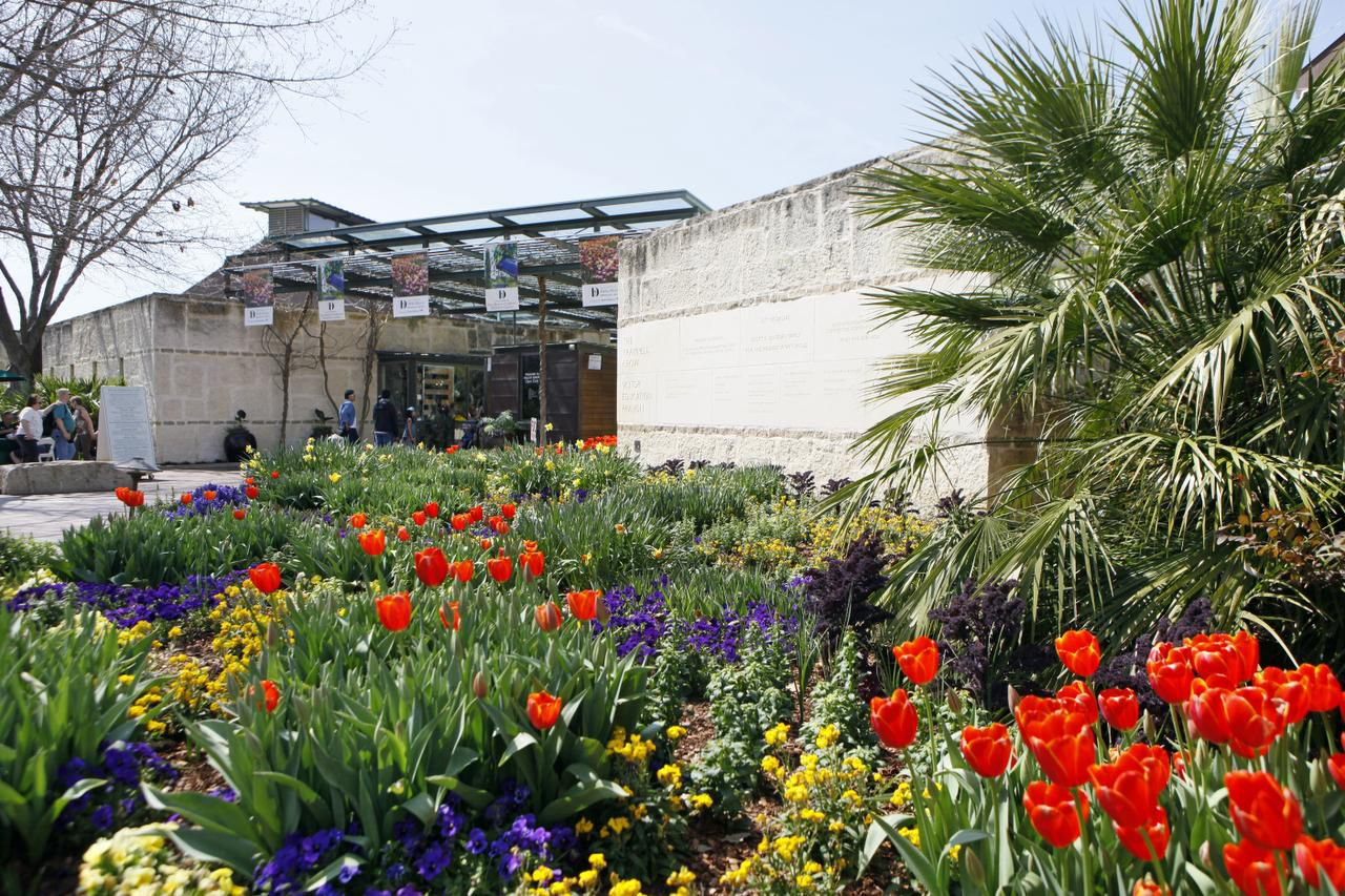 The ticket entrance to the Dallas Arboretum is planted with a melange of bold-hued spring bulbs, violas and pansies.