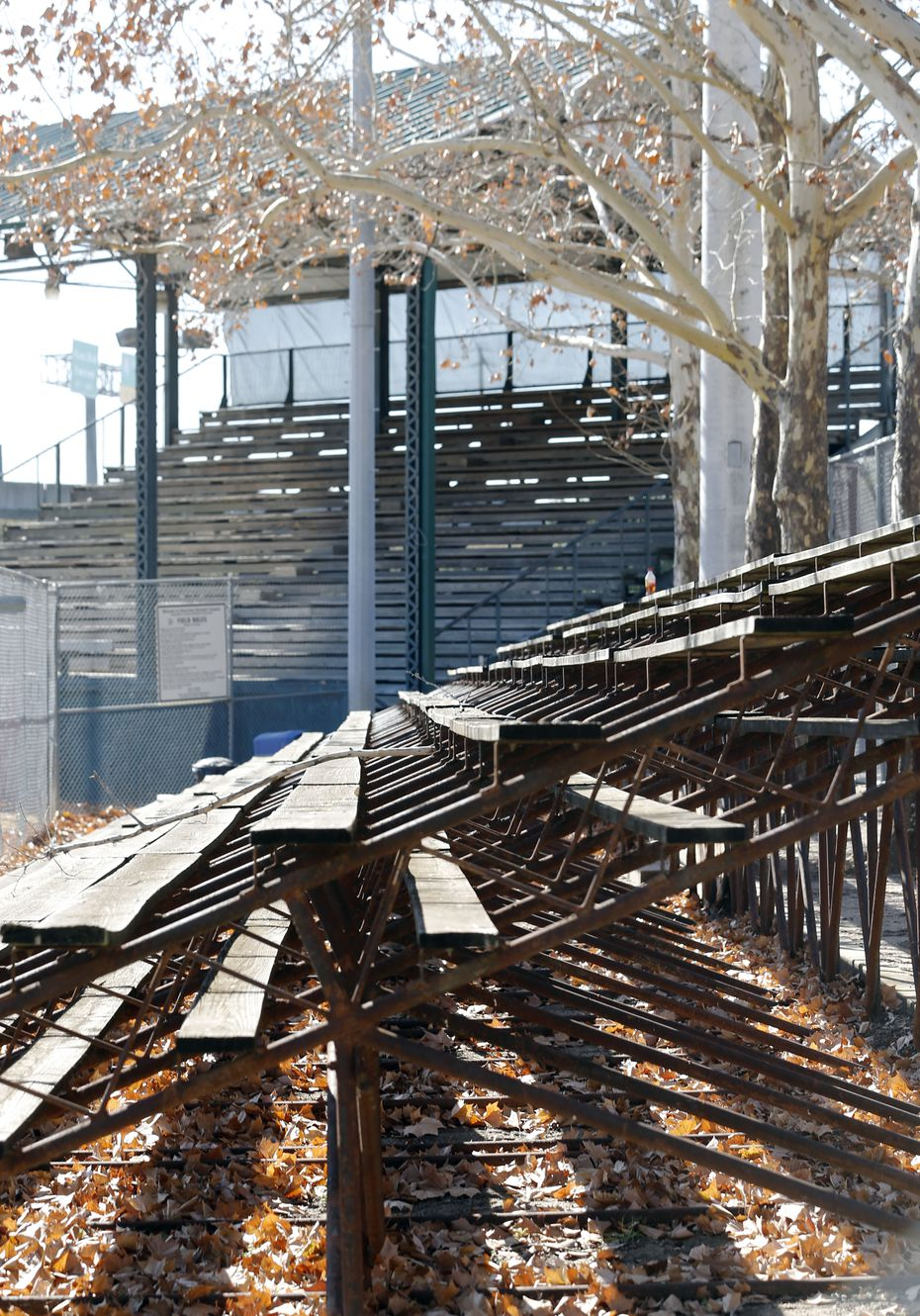 Reverchon Park's baseball field has been allowed to slowly deteriorate in recent decades and among the most visible decay are its rotting bleachers.