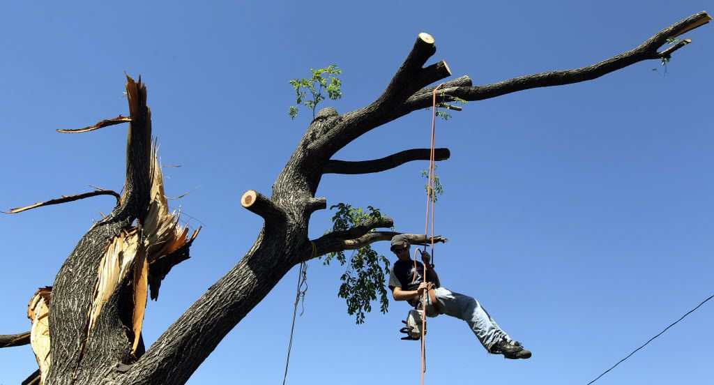 Jason Smith of Bohne's Tree Trimming worked to remove branches from a tree in the Oldfield Addition subdivision in south Arlington after a tornado struck in 2012.