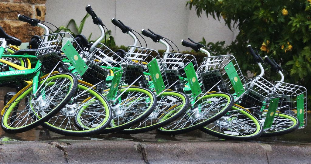 LimeBike rental bikes lie knocked over in a line along Young Street in downtown Dallas the week before Christmas.