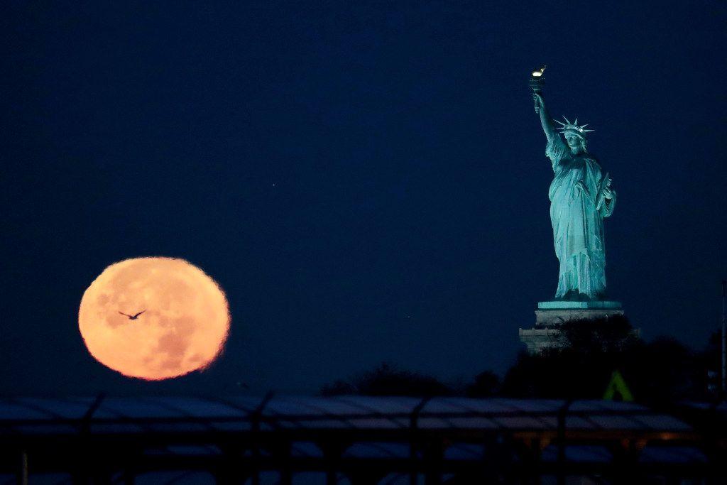 The Statue of Liberty on Nov. 14, 2016 (AP Photo/Julio Cortez)