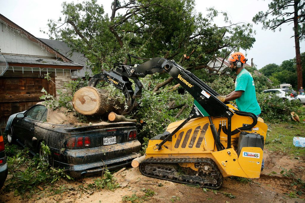 John Stoker of Stoker Tree Service removes a pecan tree from John Mooney's 1996 Ford Mustang on Andrews St. in North Arlington, Sunday, June 16, 2019. The Stokers were helping the Mooneys who helped them when they had a fire several years ago. High winds toppled trees in the neighborhood near Globe Life Park as thunderstorms rolled through the Metroplex.