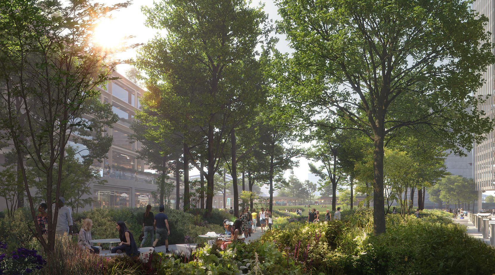 Developers describe the planned park as an urban arboretum.