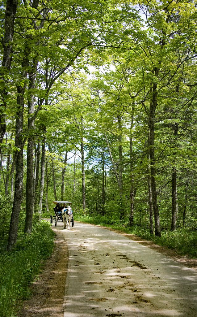 No cars are allowed on Mackinac Island, so horse-drawn carriages provide the transportation.
