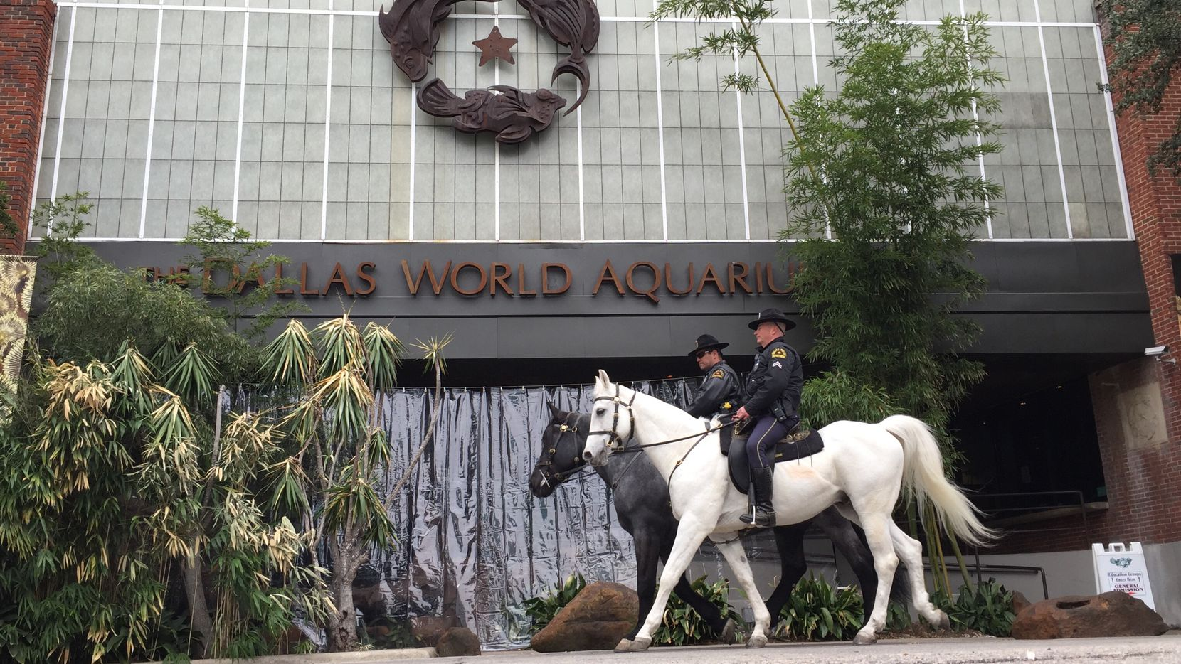 Two Dallas policemen, from the Department's Mounted Unit, pass the Dallas World Aquarium on 1801 N. Griffin St, Dallas, Texas on Friday, January 19, 2018.