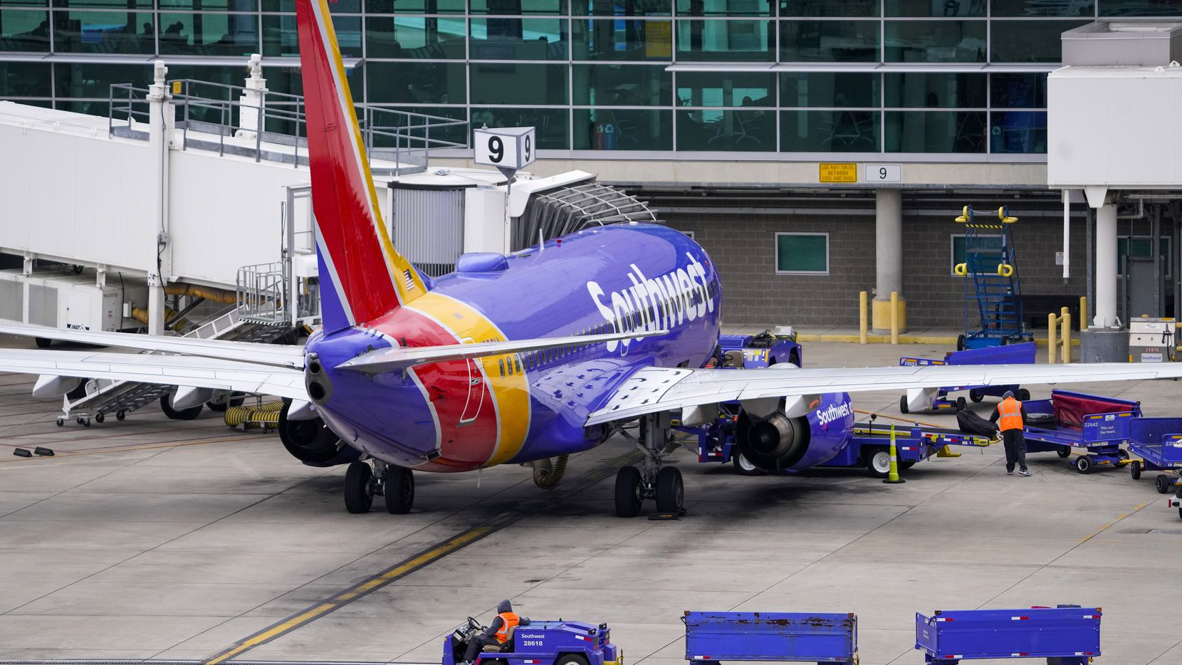 A worker drives baggage carts past a Southwest Airlines 737 at the gate at Dallas Love Field on Jan. 7.