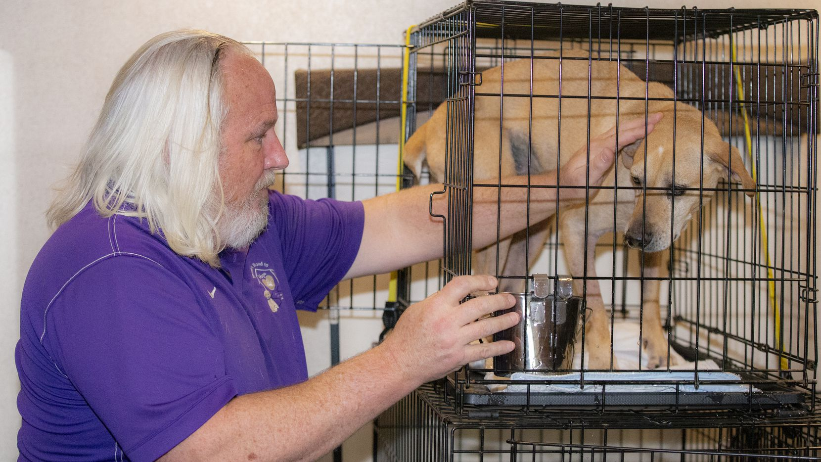James Harbor, president of Shiloh's Road to Hope, places a rescue dog in a cage for a trip to Illinois and Wisconsin from the Wise County Animal Shelter in Decatur.