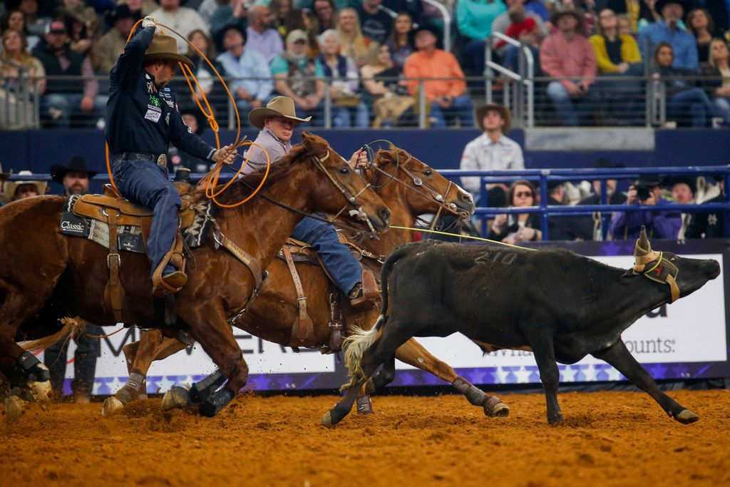 Team Ropers Luke Brown and Joseph Harrison compete in RFD-TV's The American rodeo at AT&T Stadium on March 8, 2020 in Arlington. (Juan Figueroa/ The Dallas Morning News)