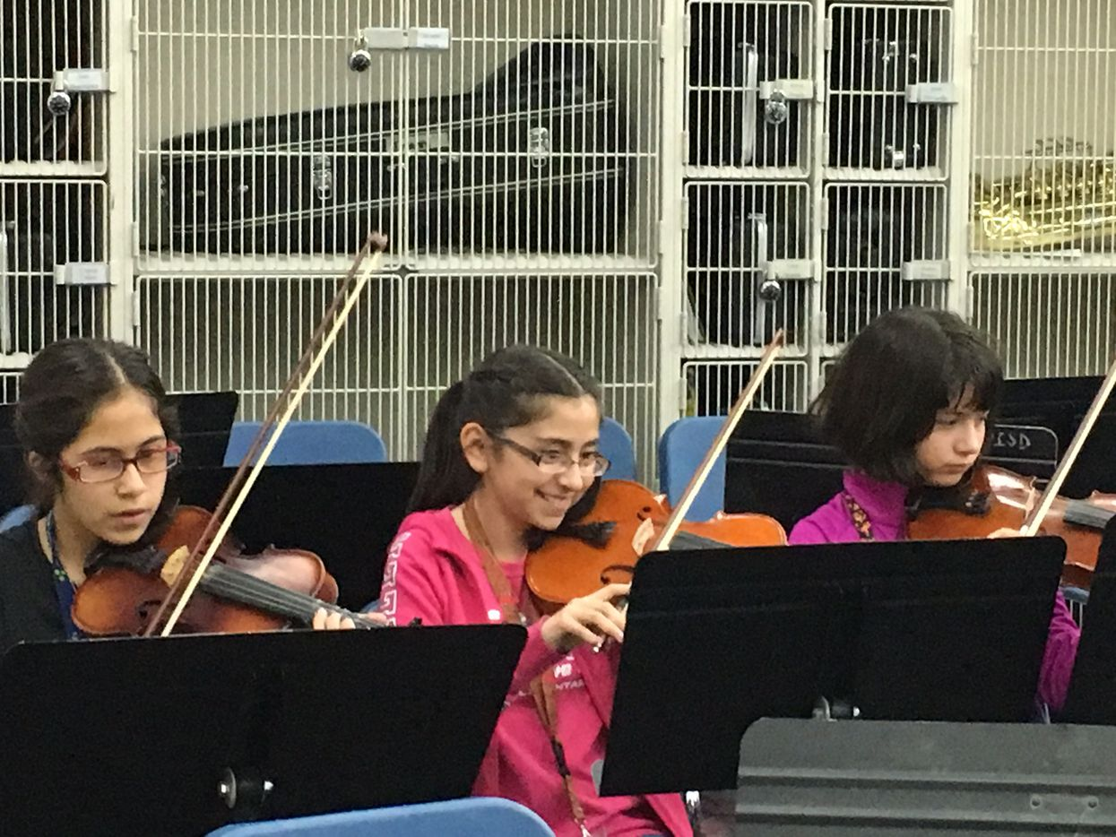 Students at Lucy Rede Franco Middle School in Presido play a song during Mariachi band practice.