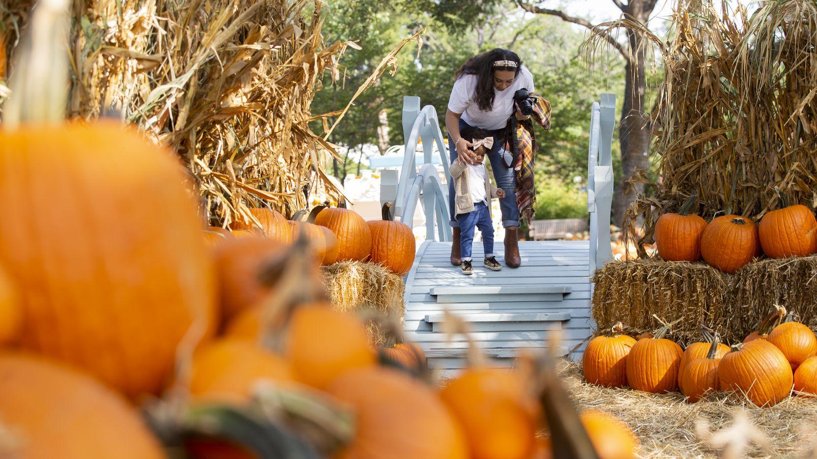 Julianna Baxter helps her 2-year-old Jordyn Simmons off the bridge at the Dallas Arboretum's Pumpkin Village on Sept. 18, 2020 in Dallas. (Juan Figueroa/ The Dallas Morning News)
