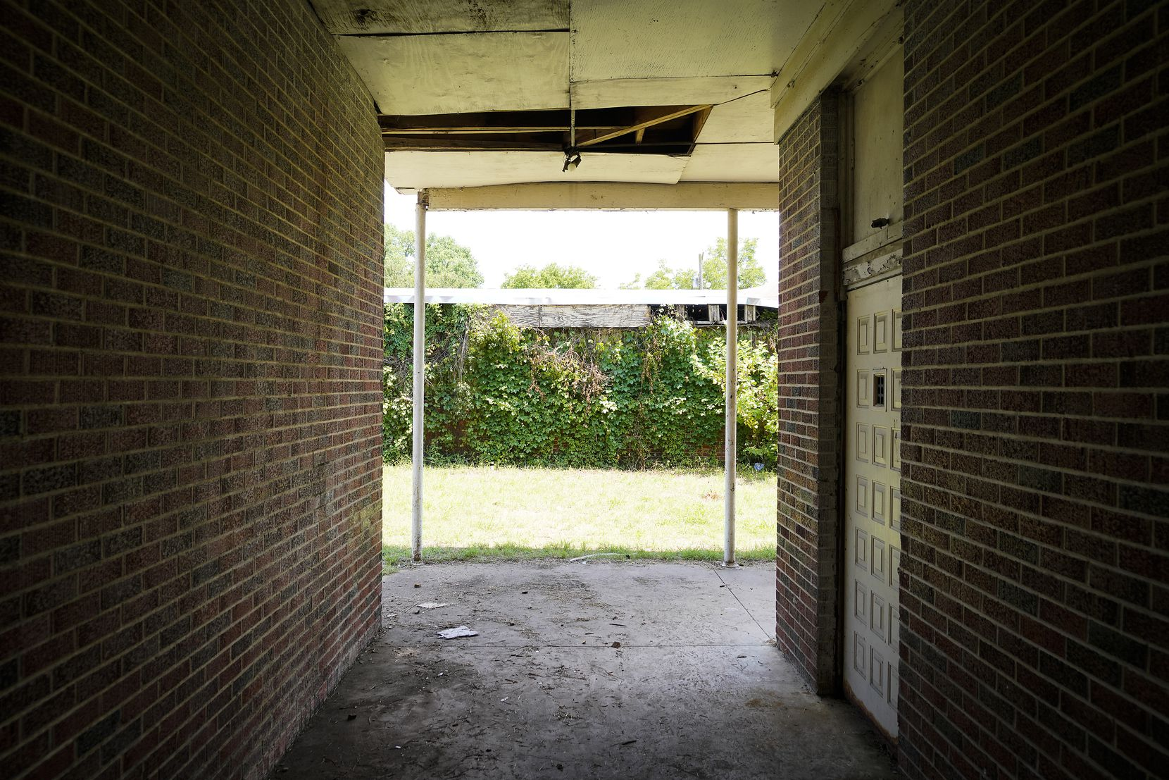 Dense growth covers a wall at the former Melissa Pierce School in Joppa on Thursday, July 8, 2021. The school opened in 1953 as a segregated school, a year before Brown vs. Board of Education, and remained open until 1968.