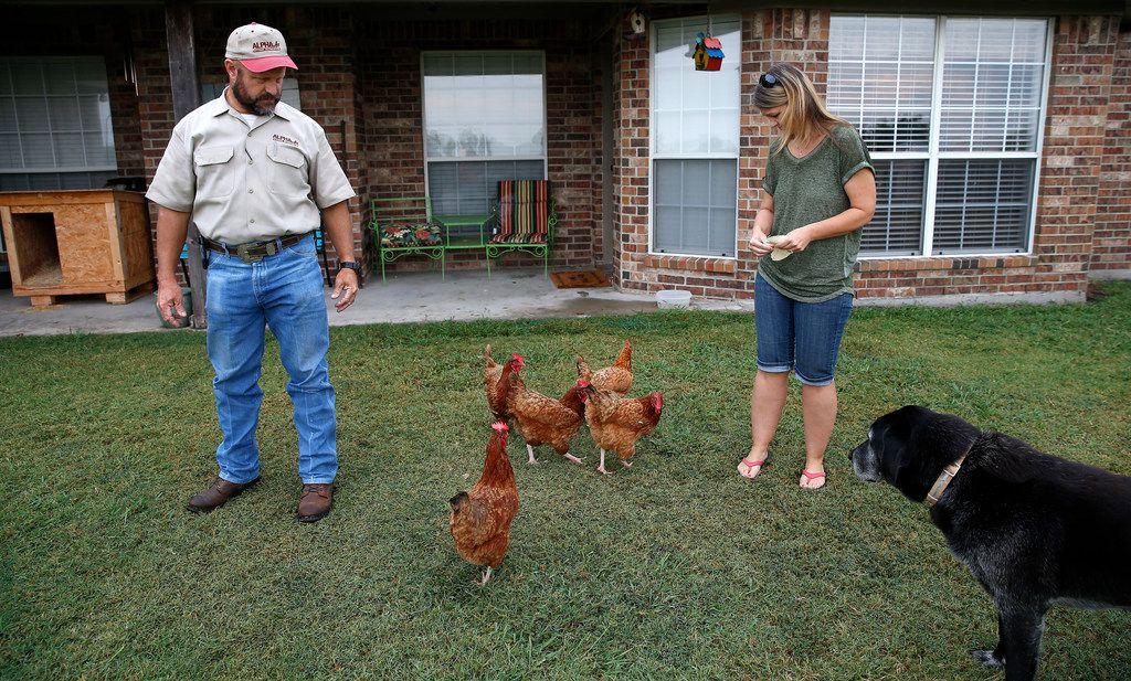 John Bomer, residente del condado de Kaufman, observa mientras su esposa Kristina alimenta a los pollos en el patio de su casa cerca de Forney. Los residentes rurales expresaron preocupaciones en 2017 acerca de las anexiones de propiedad de Mesquite, cuyas ordenanzas decían habían impuesto reglas en oposición al estilo de vida rural de sus comunidades.