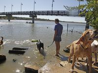 Parques de perros como Mockingbird Point Dog Park en White Rock Lake serán reabiertos, según anunció el Departamento de Parques y Recreación.