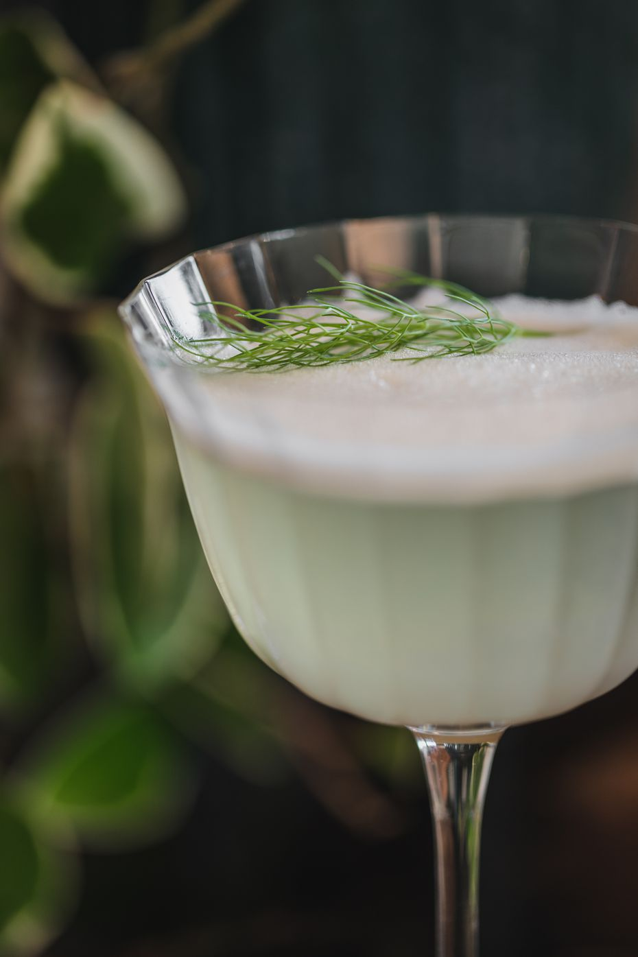 The Garden Fizz is a cocktail made with vodka, pisco, bitter bianco, lemon, egg white and fennel frond sourced from the garden on-site. Director of beverage Anna Krone has come up with a fleet of cocktails for the new restaurants at the Village in Dallas.