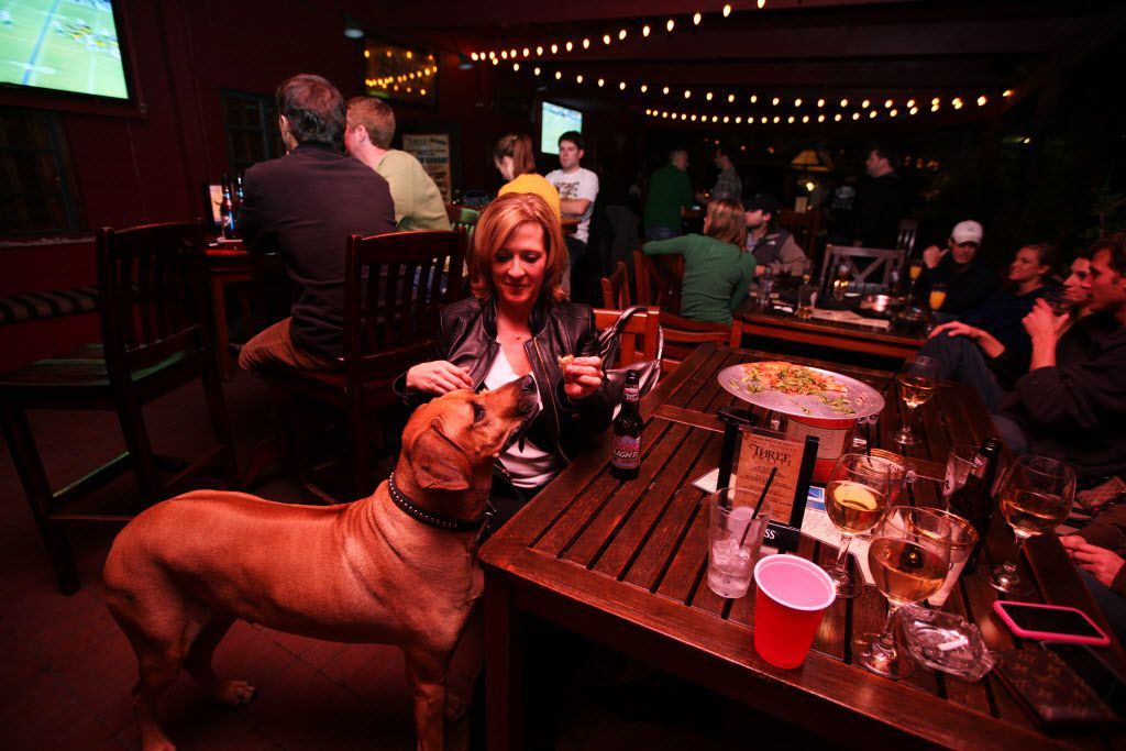 Stacy Schurter of Dallas feeds Rebel, the bar dog, a bite of her pizza while watching the New York Jets vs. the Pittsburgh Steelers NFL Conference Championship game at Three Sheets Bar in Dallas on January 23, 2010. Owner Patrick Tetrick brings his dog Rebel to work to keep patrons company. (Sonya N. Hebert/The Dallas Morning News)