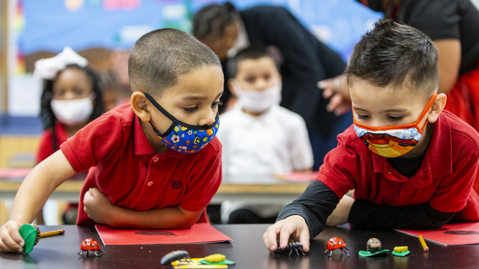 Izaiah Loving, left, and Damian Morris arrange plastic models of the different stages of a ladybugs life cycle during a pre-k through second grade science lab at High Pointe Elementary School in Cedar Hill, Thursday, May 20, 2021. In the lab students learn age specific science lessons. (Brandon Wade/Special Contributor)