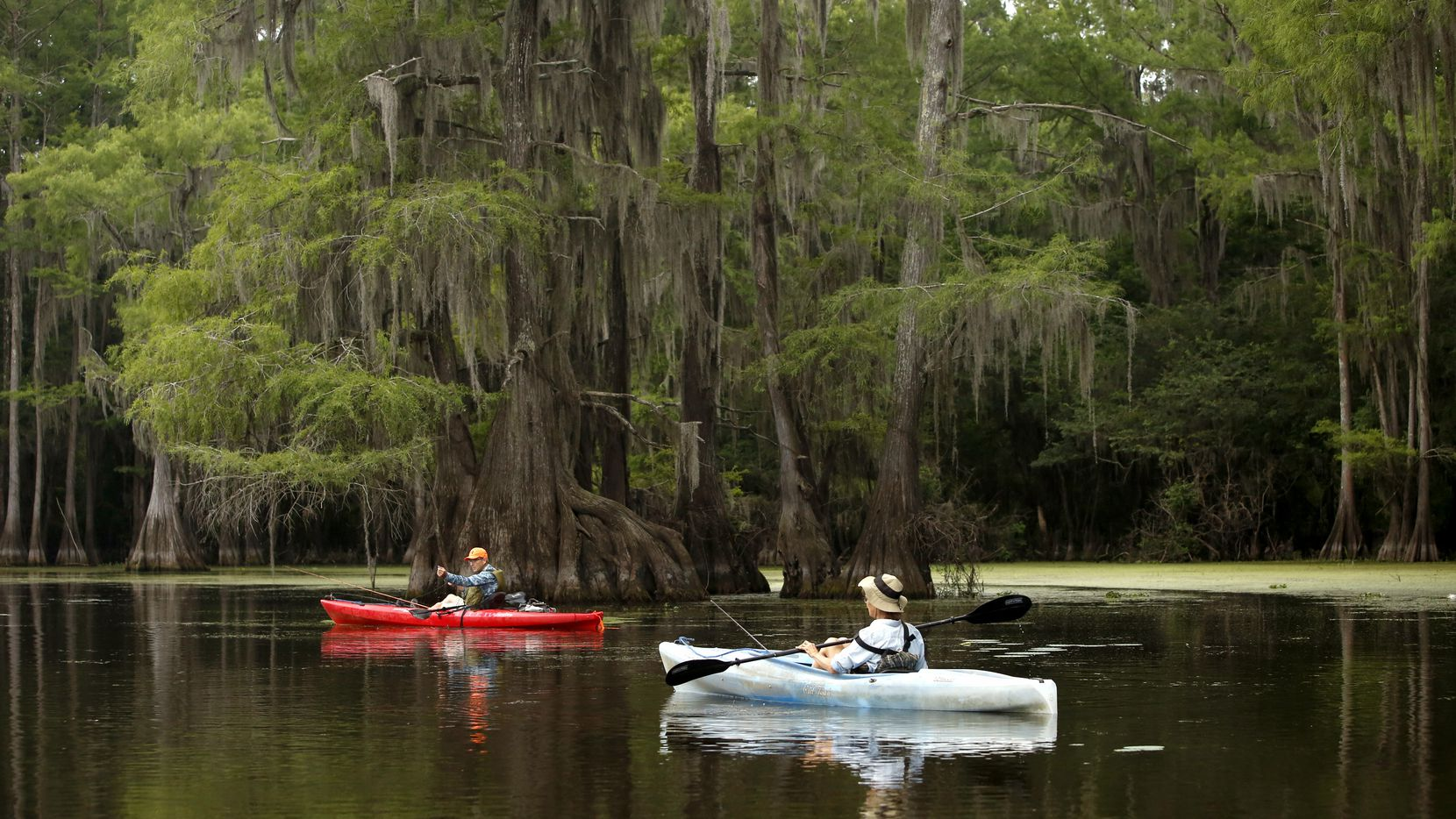 Boaters enjoyed some early-morning fishing at Caddo Lake in June 2018. With its 25,400-acre mosaic of swamps, ponds and bayous, Caddo Lake has a lush landscape that equals anything Louisiana has to offer.