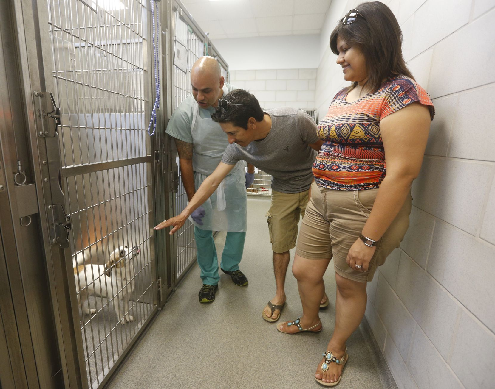 Employee Robert Baker, left, helps Gus and Cindy Camarillo as they look for a dog at Dallas Animal Services.