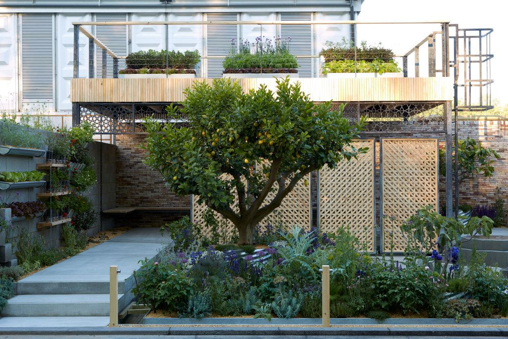 A full view of Lemon Tree Trust Garden at the Chelsea Flower Show, which won a Silver Gilt Medal (second place) last week.