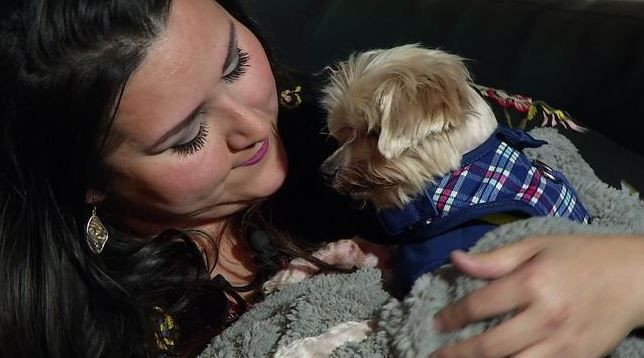 Iris Candelaria snuggles with Bebe, who had been missing for 11 years until he turned up at a Midlothian veterinary clinic.