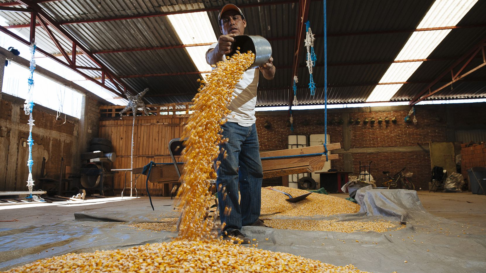 U.S. farmers export over $2.5 billion worth of corn to Mexico annually. That trade, along with many more exports, could be put at risk if President Trump tries to restrict NAFTA or impose new tariffs. (Rodrigo Cruz/The New York Times)