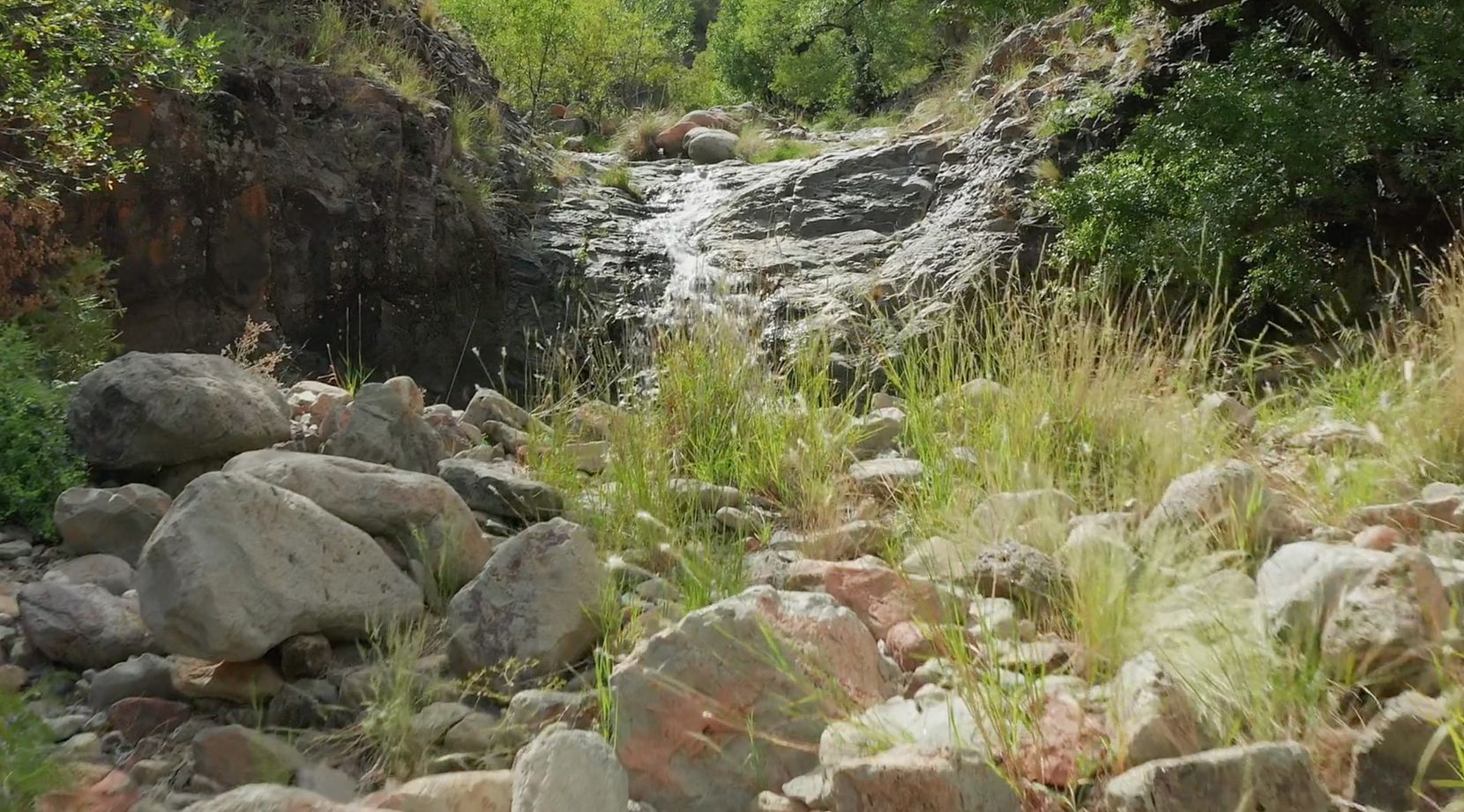 The mountain ranch has streams and springs.