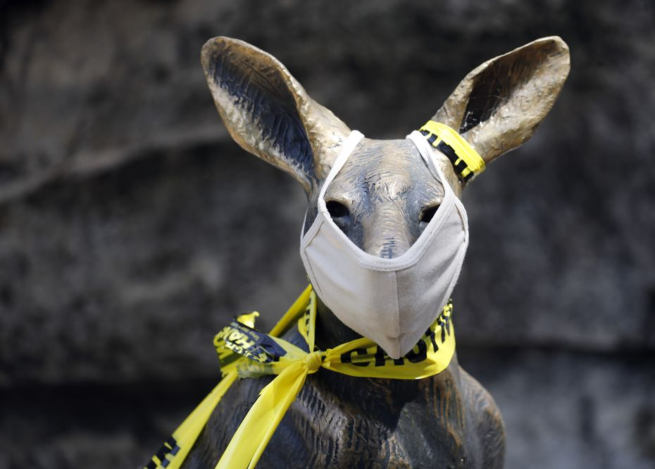 A statue in front of the Lacerte Family Children's Zoo sports a mask and caution tape at the Dallas Zoo.